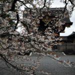 世界の一の老舗王国 日本